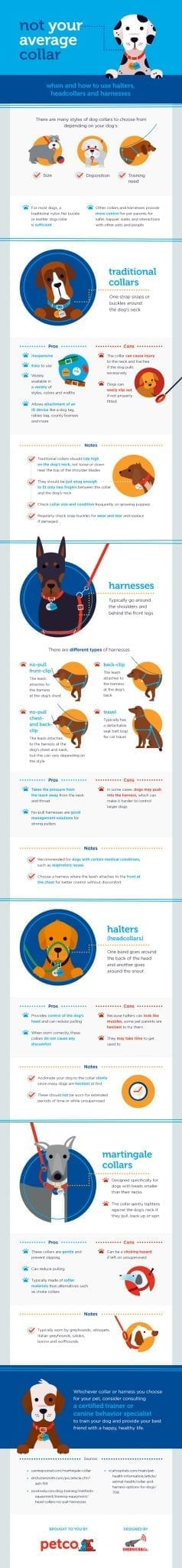 Petco-Collar-infographic